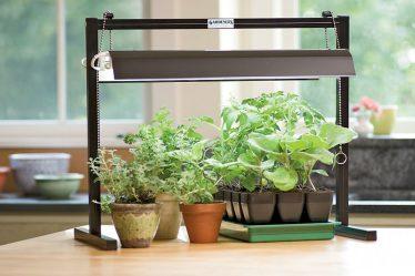 Рейтинг ТОП 7 лучших фитоламп для растений