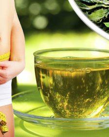 Рейтинг ТОП 7 лучших чаев для похудения